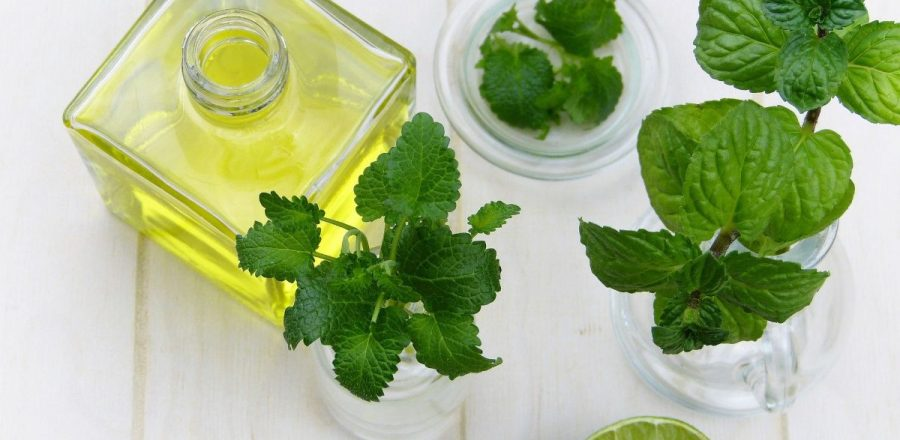 Essential Oil Peppermint: 6 Amazing Uses To Know